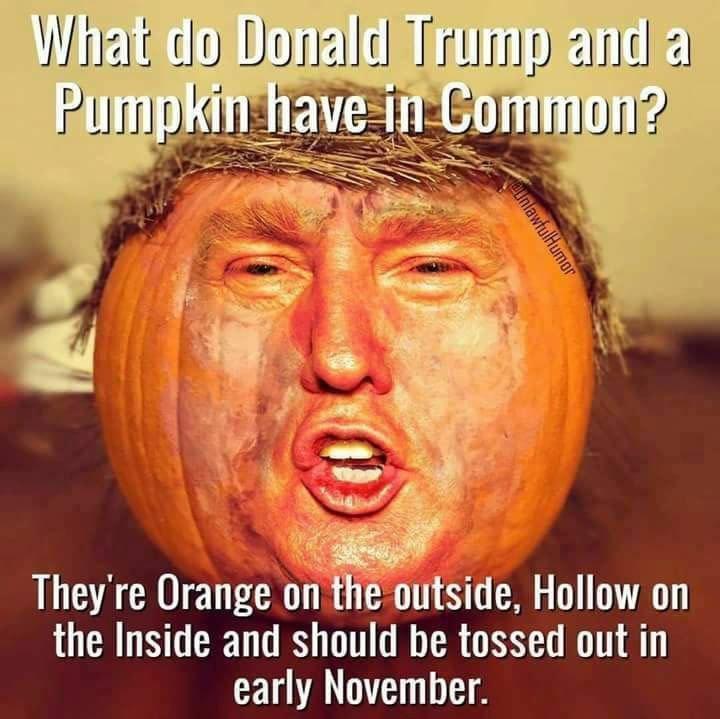 trump-pumpkin-common-58126ce25f9b58564cf1f586.jpg.114d82d3f4108f56e4ab2af15ee28bdb.jpg